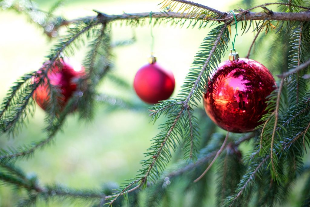 real christmas trees are green in both the traditional and modern sense of the the word the national christmas tree association suggests some of the