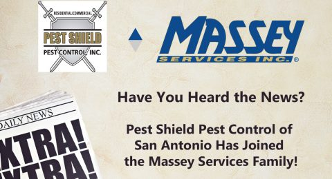 Welcome Pest Shield to the Massey Family