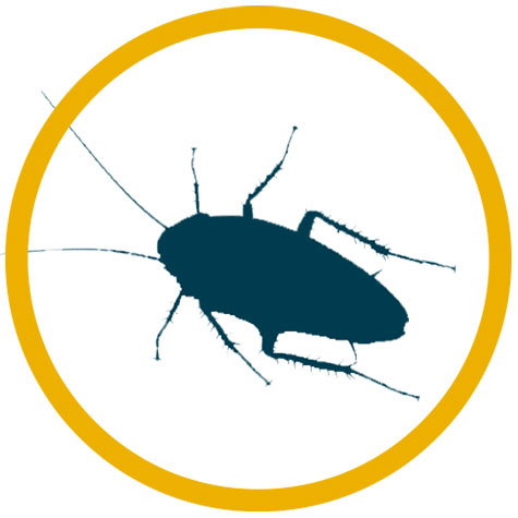 Free Mobile Al Exterminators Advice