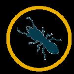 Termite Pest Control in Orlando